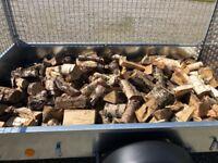 Split Hardwood logs