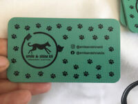 No sedation Cosmetic teeth cleaning for cats and dogs!