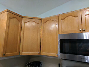 Looking for Cabinets