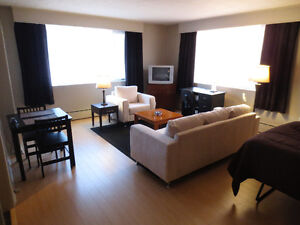 Downtown Furnished and Equipped Bachelor Condo With Parking