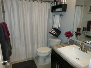 Downtown-Beautiful 1+ Bed Condo (avail. Jan. 1st) London Ontario image 4