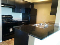 BEAUTIFUL BRAND NEW 2 BR TOP FLOOR EXCELLENT SOUTH SIDE LOCATION