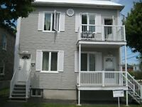 Lakeshore renovated bachelor in duplex (Dorval)