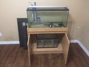 45 gallon tank, stand and hood