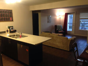2 bed, 2 bath: Summer Sublet Deal, potential for lease afterward