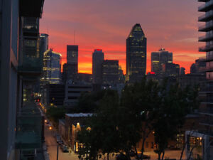 New Condo 2 rooms Griffintown, gym, pool, PARKING INCLUDED, NOW!