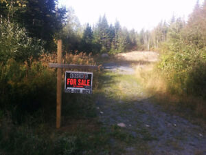 49 Acres of Land for sale in Musquash