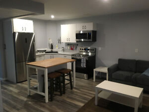 Brand New 1 Bedroom Fully Furnished Basement Suite