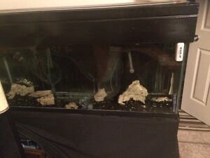 55 gallon fish tank and stand.