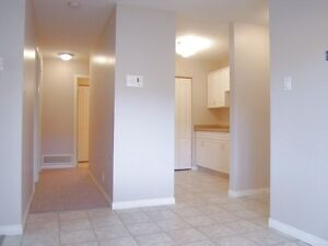 2 BDRM CONDO CATHEDRAL AREA Available Nov 1st and Dec 1st