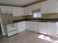 3 BR Downtown - heat included