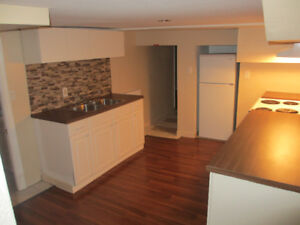 COZY 1 BEDROOM North End Basement Apartment FOR RENT