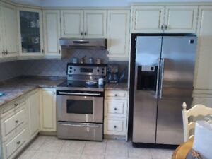 KItchen Cabinets/Counter/Sink/Faucet