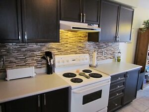Cabinet Painter Kitchen Cabinet Refinishing Spray Painter Mississauga / Peel Region Toronto (GTA) image 10