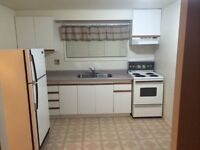 Newly updated apartment  for rent