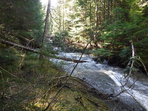placer gold claim on Putnam creek and silver star
