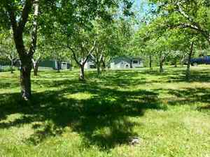 1.33 acre Hunting Camp
