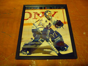 Toronto Maples Leafs Felix Potvin Framed Picture