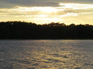 HIGH/DRY 1-AC WATERFRONT AND WATER ACCESS LOTS AT COAL CREEK