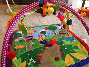 Play Mat/Gym for baby