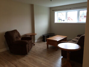 Beautiful furnished 2 bedroom apartment for rent