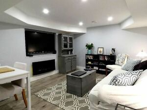 One bedroom apartment for rent in a newly finished basement