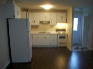 Furnished Apartments in Placentia Near Long Harbour, Argentia St. John's Newfoundland image 5