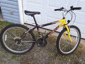 Vélo de montagne 20 po