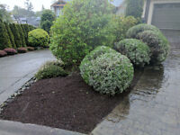 Gardening and Property Make-overs