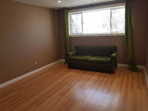 BASEMENT SUITE WITH 1 LARGE BEDROOM