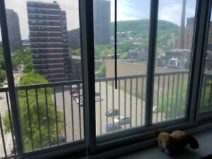 4 1/2 Two Bdrm Apartment Lease Transfer (May 1 -Aug 31)