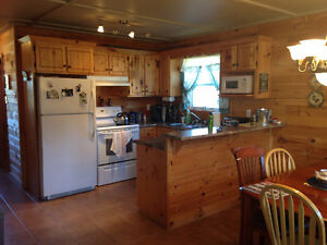 Cabin for Sale in Junction Park, Only 10 years old, 4 Bedrooms! St. John's Newfoundland image 6