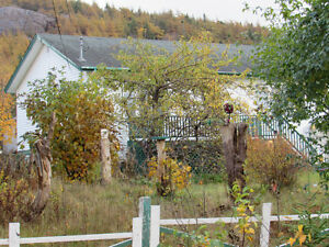 1.58 ACRE ESTATE..1 OWNER BUNGALOW...AVONDALE. St. John's Newfoundland image 3