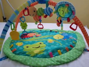 Taggies Infant Activity Gym/Play Mat