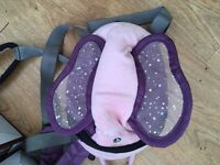 Harness and rucksack