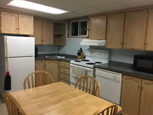 One Bedroom Basement Apartment/Flamborough