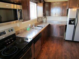 Main floor apartment w/ massive private deck in Airport Heights