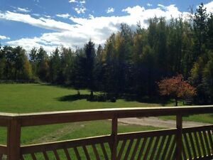 80 Beautiful Treed Acerage For Sale