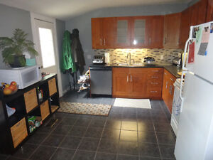 Gorgeous Two Bedroom Apartment in Downtown Area