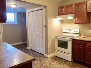 1-Bedroom basement apartment in Riverview