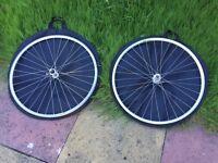 Campagnolo Racing wheels