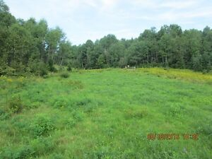 Build Your Home on 20.4 Acres 10 Minutes From North Bay