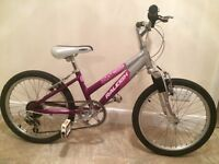 "Newish Girls Raleigh bike 20""wheel***delivery"