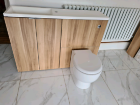 Bathroom vanity unit with toilet
