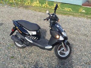Scooter PGO T-REX