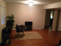 2 Bedroom basement suite located near Mt.Lehman