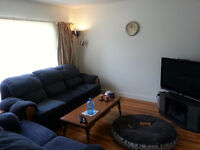 4924 19 Ave NW (Beautiful Montgomery House)
