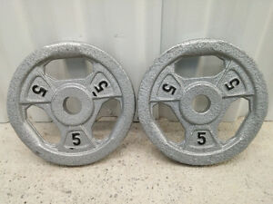 Two 5 lb Metal Barbell Plates with Handles
