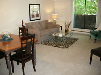 EXECUTIVE ONE BEDROOM PLUS DEN FULLY FURNISHED SUITE