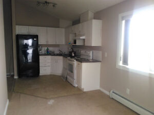 Spruce Grove brand new 3 bedroom available immediately